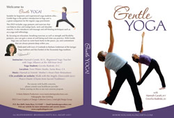 Yoga Instructin on DVD